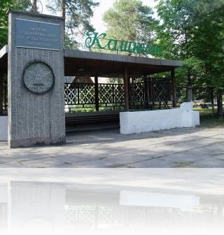 Детский лагерь «Каштан»