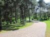 Детский лагерь ЧАЙКА Богуслав, путевки в лагерь Чайка Богуслав