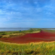 азово-сивашский национальный парк