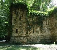 Аскания-Нова – жемчужина степных просторов