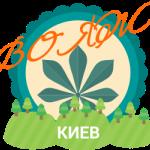 ВОЯЖ лагерь под Киевом